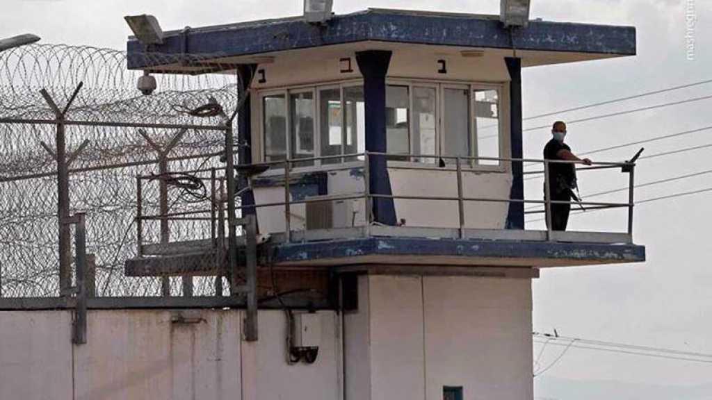 Le Hamas met en garde «Israël» contre une politique de torture «dangereuse» visant les prisonniers palestiniens