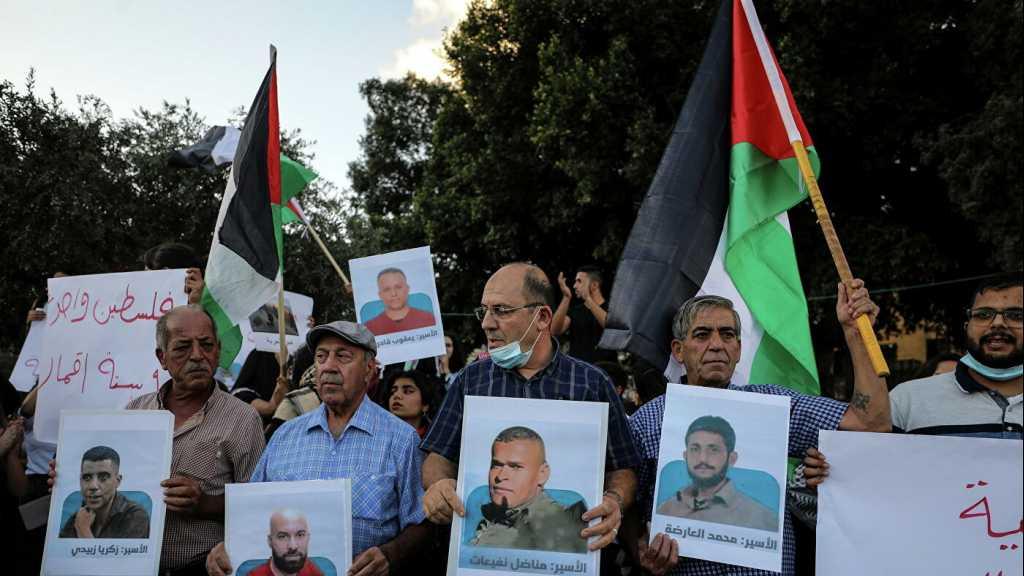 Les six héros palestiniens évadés à nouveau derrière les barreaux