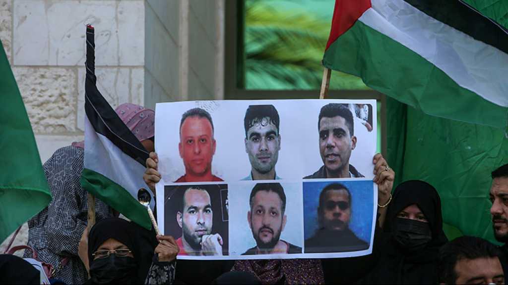 Appel à la protection des 6 prisonniers palestiniens évadés et ré-arrêtés par «Israël»