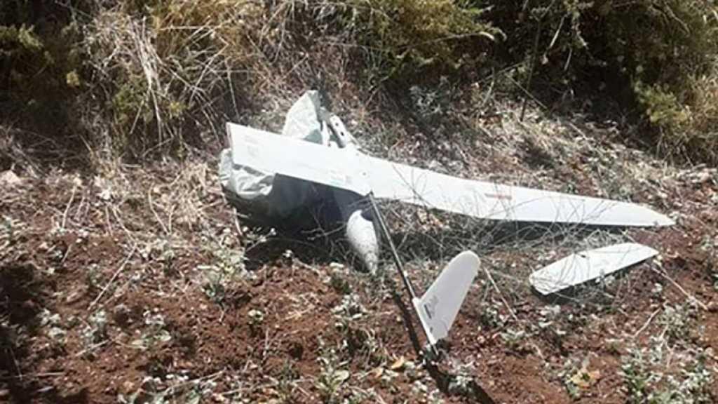 L'armée israélienne affirme qu'un de ses drones s'est écrasé en Syrie