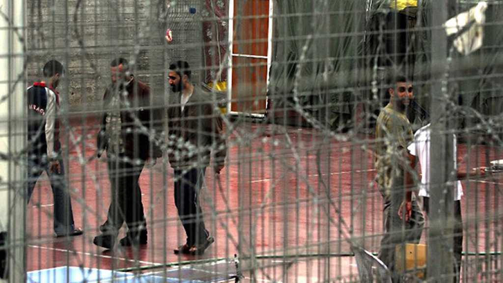 Palestine: 250 prisonniers du Jihad islamique entament une grève de la faim