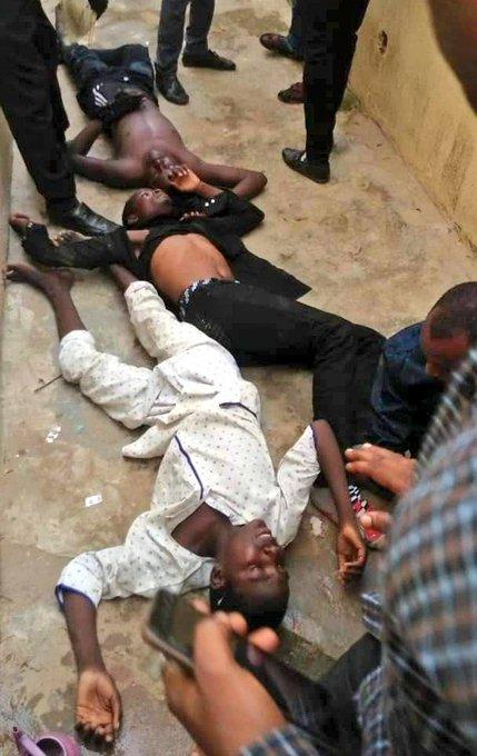 Jour de l'Achoura au Nigéria: Plusieurs manifestations réprimées dans le sang