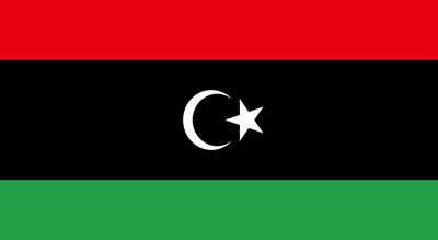 Cessez-le-feu en Libye: le maréchal Hatfar a quitté Moscou sans signer l'accord